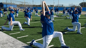 blue_jays_camp640